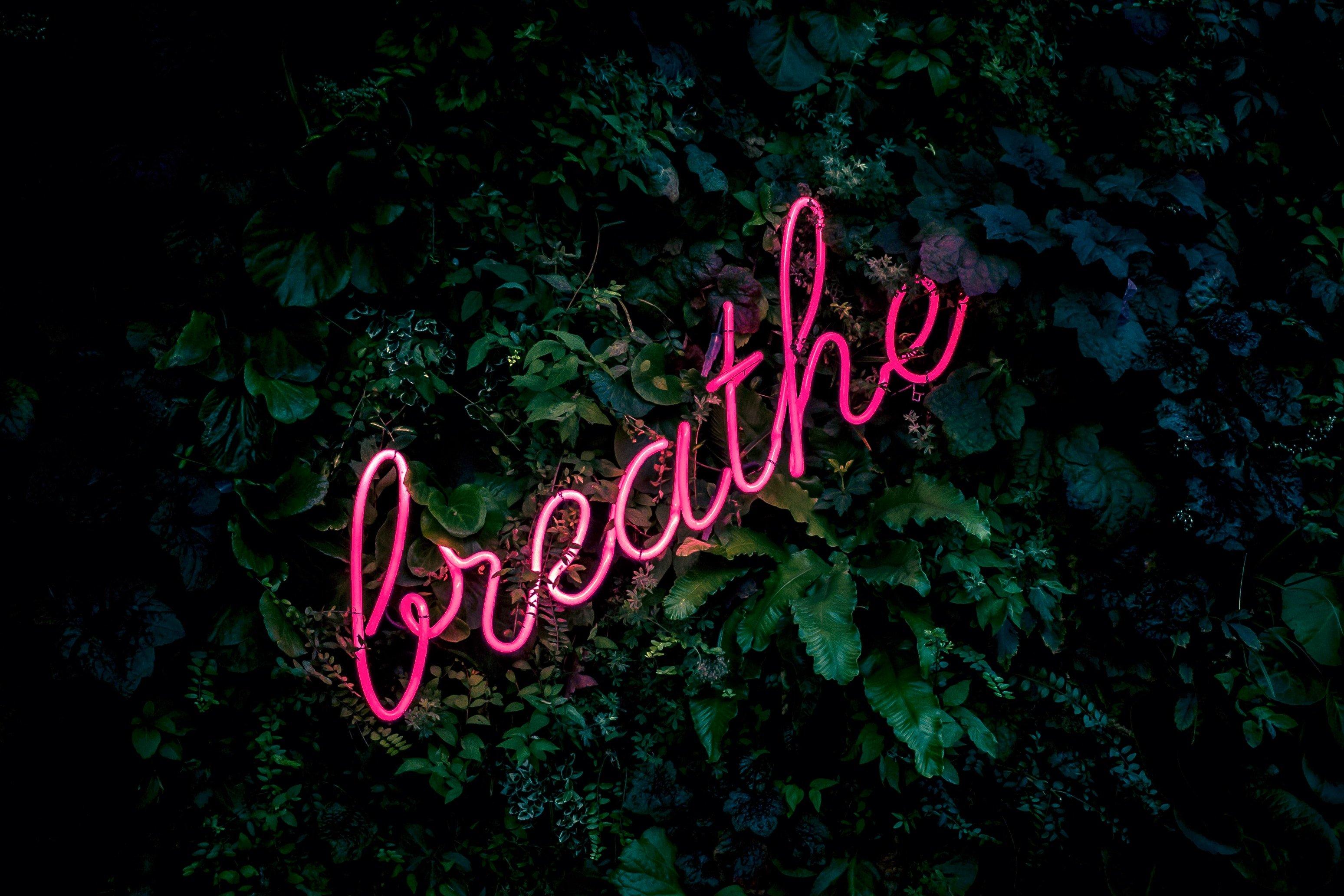 tampa marketing company breathe quote