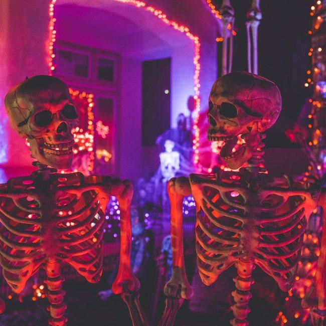 Skeletons doing spooktacular things in tampa bay